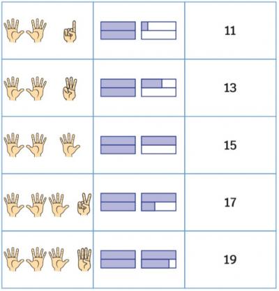 41 Cards Odd